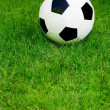 Soccer ball on grass — Stock Photo #28272299