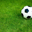 Soccer ball on grass — Stock Photo #28272305