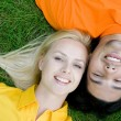 Couple Lying on the Grass — Stock Photo #28272409