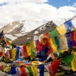 Stock Photo: TibetPrayer Flags, Himalayas, India