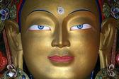 Buddha statue, Ladakh, India — Stock Photo