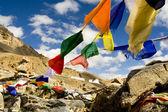 Tibetan Prayer Flags, Himalayas, India — Stock Photo