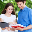 Student couple learning outdoors — Stock Photo #28520015