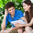 Student couple learning outdoors — Stock Photo #28520073