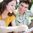 Student couple learning outdoors — Stock Photo #28520091