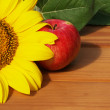 Apple and sunflower — Stockfoto