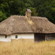 Stock Photo: Old village house