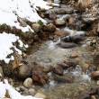 Winter mountain river — 图库照片