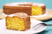 Close up of a piece of cake with icing sugar — ストック写真