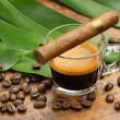 Coffe cup and cigar, coffee beans and leaves on wooden background — Stock Photo