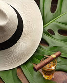 Cigar on a glass of rum, panama and leaf green — Stock Photo