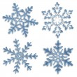 Set of blue icy snowflakes on white background — Stock Photo