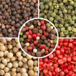 Varieties of peppercorns: white, black, green, red and mixed — Stock Photo #36166135