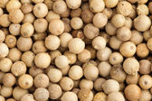 Close up of a background of white peppercorns — Stock Photo