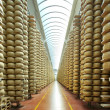 Stock Photo: View of maturing storehouse of parmescheese