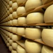 Stock Photo: Freshly made wheels of cheese in maturing cellar