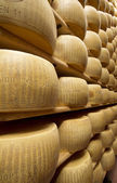 Parmesan cheese stacked in a maturing warehouse — Stock Photo