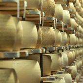 Wheels of italian grana on cheese rack — Stock Photo