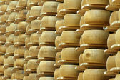 Lots of wheels of parmesan cheese on shelves of a storehouse — Stock Photo