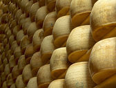 Heap of wheels of cheese in a maturing storehouse — Stock Photo