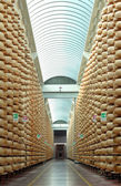 Maturing storehouse of Italian typical parmesan cheese — Stock Photo