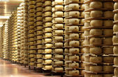 Shelves of a cheese maturing warehouse — Stock Photo