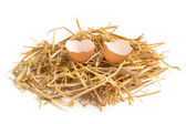 Broken egg in a hay nest on white background — Stock Photo