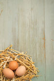 Freshly laid eggs in nest of hay on wooden background — Stock Photo
