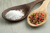 Sea salt and mix of peppercorns in wooden spoons — Stock Photo