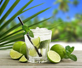 Mojito cocktail and fresh ingredients in a tropical landscape — Stock Photo