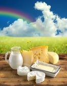 Assortment of dairy products in a rural scenery — Stock Photo