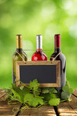 Blackboard hanging on wine bottles and grapevine leaves — Photo