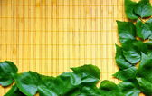 Background wiht leaves — 图库照片