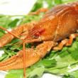Stock Photo: crayfish
