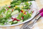 新鮮な野菜のサラダ — ストック写真