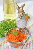 Fresh carrot salad and rabbit — Stock Photo