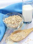 Płatki owsiane w misce i mleka — Zdjęcie stockowe