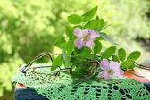óculos e flores cor de rosa — Foto Stock