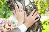 Mani con anelli di nozze — Foto Stock