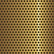 Golden metal grid — Stock Vector