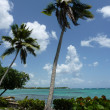 Beach of Bayahibe, Dominican Republic — Stock Photo