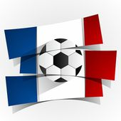 France Football Team — Stock Vector