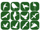 Birds in the green squares — Vector de stock