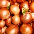 Onions - Stock Photo