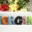 Name Morgan — Stock Photo