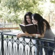 Girls reads book in park — Stockfoto #28564961