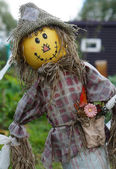 Funny scarecrow — Stock Photo
