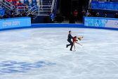 Isabella Tobias and Deividas Stagniūnas at Sochi 2014 XXII Olympic Winter Games — Stock Photo