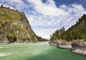 Altai. Siberia. River Katun. Russia — Stock fotografie