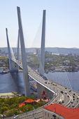 Golden bridge over Zolotoy Rog Bay. Vladivostok. Russia — Stock Photo